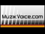 medium_muzikvoice2.JPG